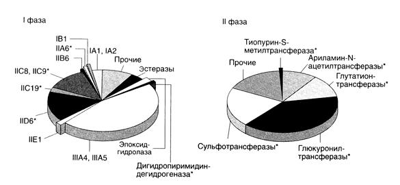 Метаболизм лекарственных средств