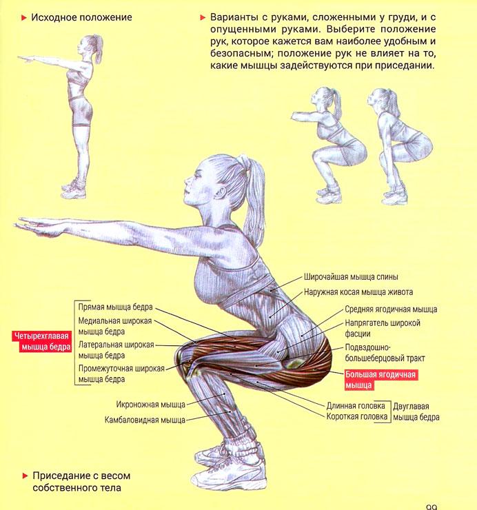 Упражнения для похудения живота и боков: эффективный 11