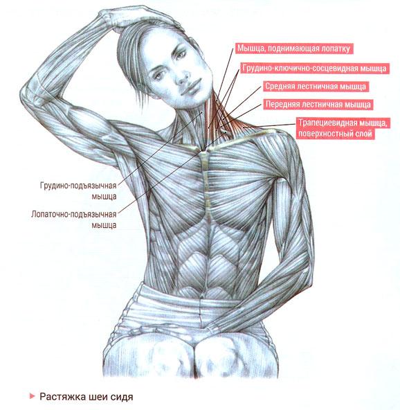 Эндометриоз как его быстро вылечить и забеременеть