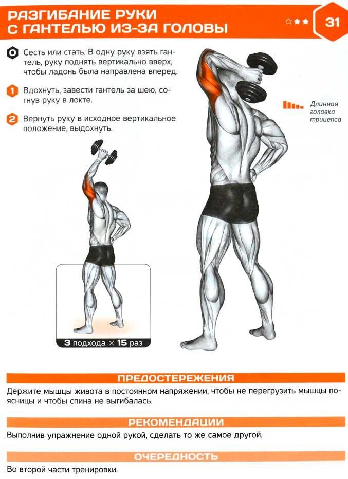 Упражнения для рук с гантелями видео