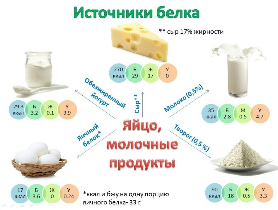 Файл:Protein source milk eggs.jpg