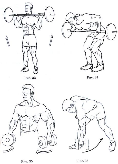 Комплекс упражнений для