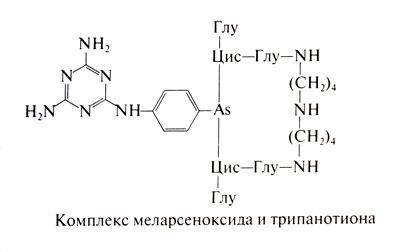 Дегидроэметин инструкция по применению аналоги