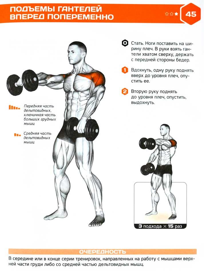 Упражнения для плеч с одной гантелей в домашних условиях 374