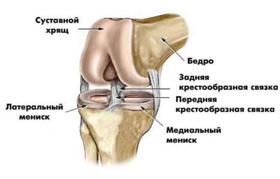 Выбитый коленный сустав клиника по протезированию тазобедренного сустава в чебоксарах