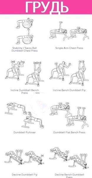 Программу упражнений в тренажерном зале для девушек