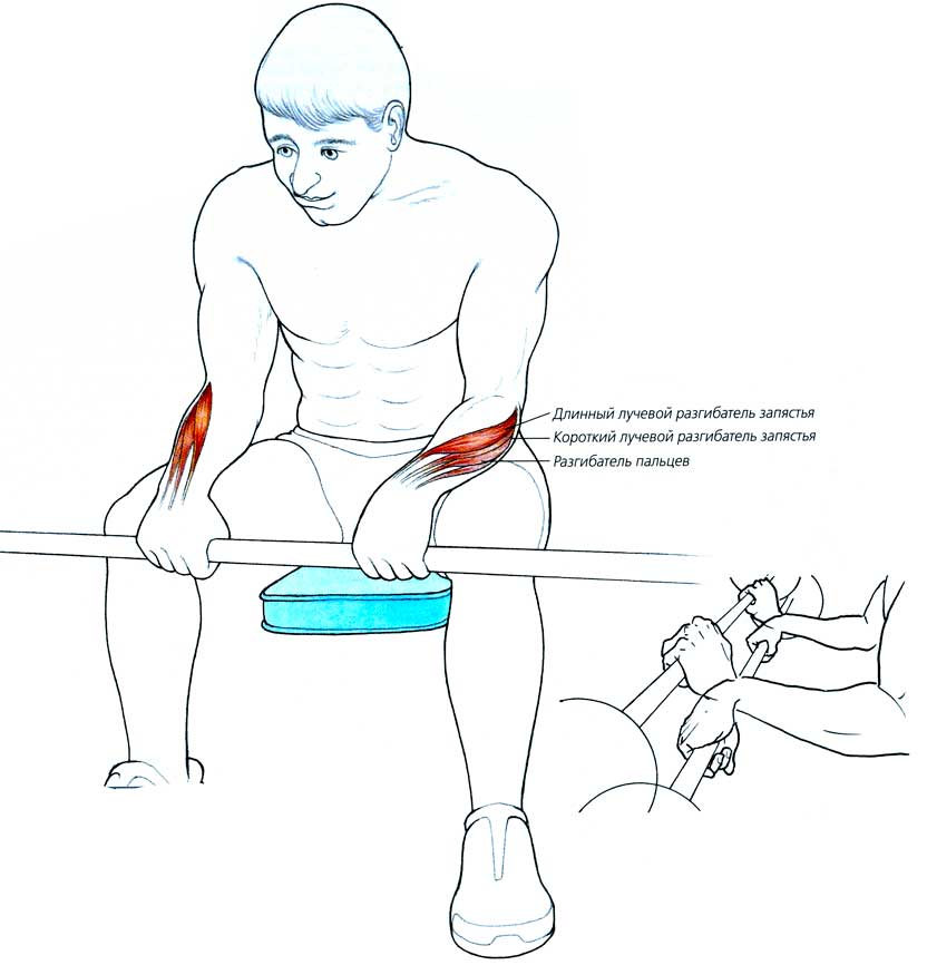 Упражнения для запястий в домашних условиях