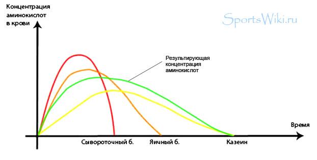 Скорость усвоения различных видов белков