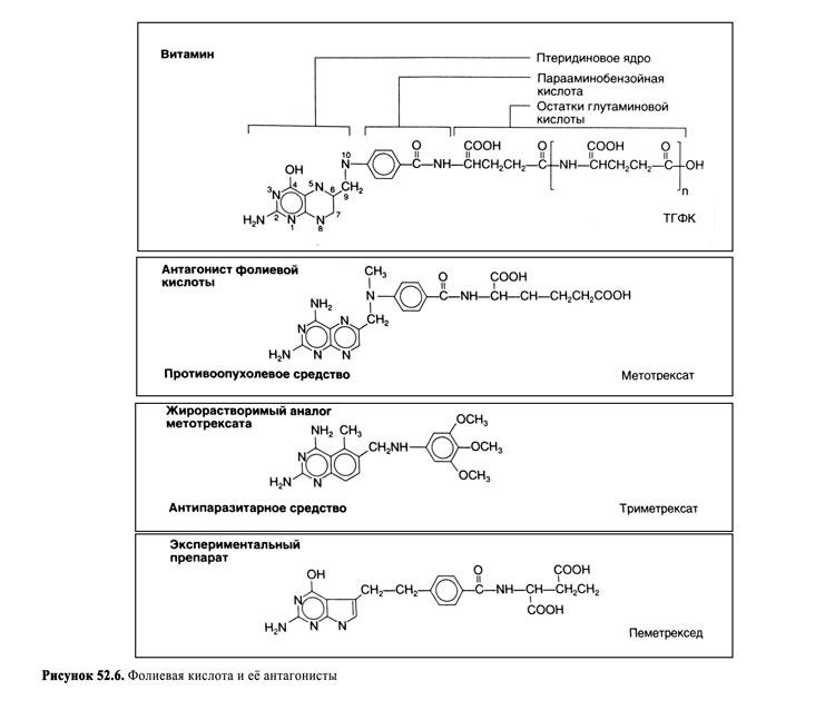 Антиметаболиты — SportWiki