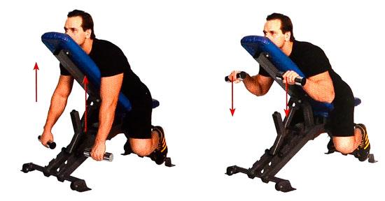 Упражнения на бицепс с гантелями молоток