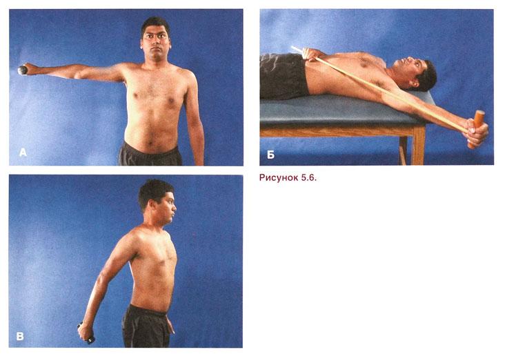 Задняя нестабильность плечевого сустава здоровые суставы центр новосибирск