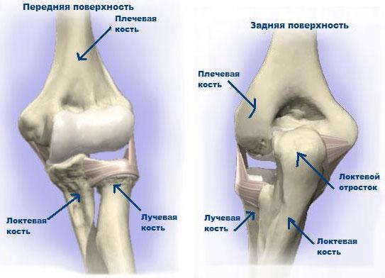 Как выпрямить локтевой сустав артроз межреберно-позвонковых суставов