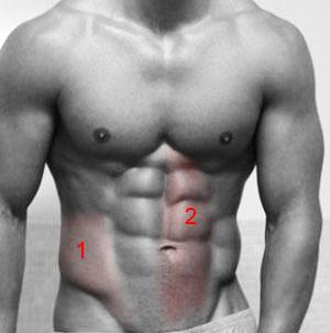 Пресс упражнения и особенности тренировки энциклопедия Пресс 1 косая мышца живота 2 прямая мышца живота