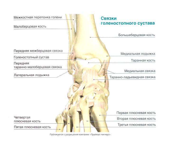 болезни суставов и позвоночника, эффективные способы их лечения