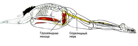 ЭКА-ПАДА-РАДЖАКАПОТАСАНА с наклоном вперед
