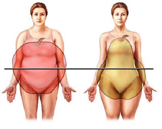 отложения жира в области живота у женщин