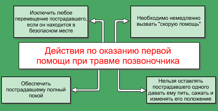 Файл:Vertebral injury.png
