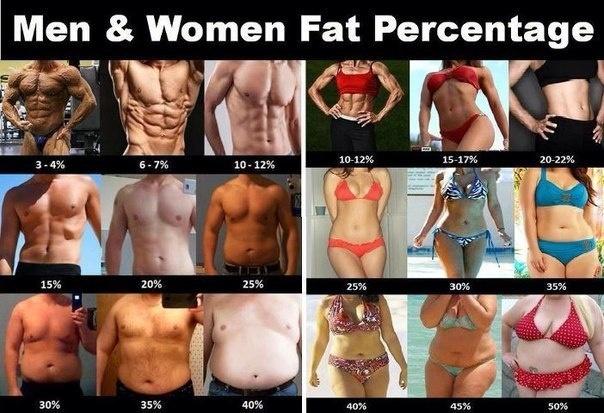 Как снизить процент жира в организме