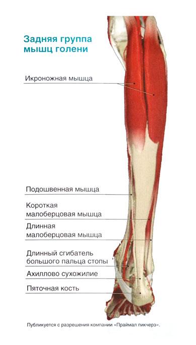 Тыльном сгибании стопы в голеностопном суставе ломит суставы кисти