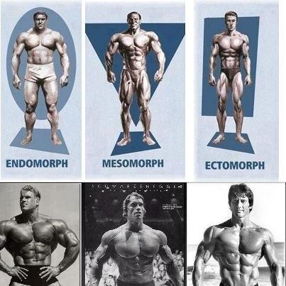 режим питания для похудения мужчинам