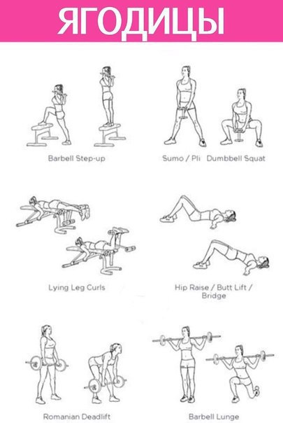 Программа тренировок для женщин в тренажерном зале с картинками