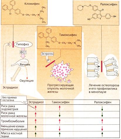Принципы фармакологии править