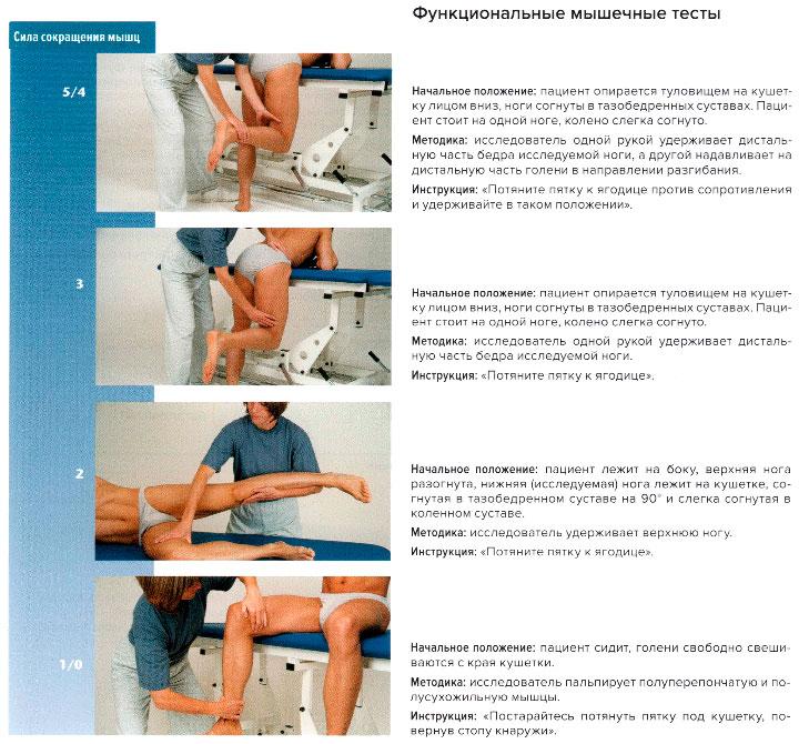 тесты коленный сустав