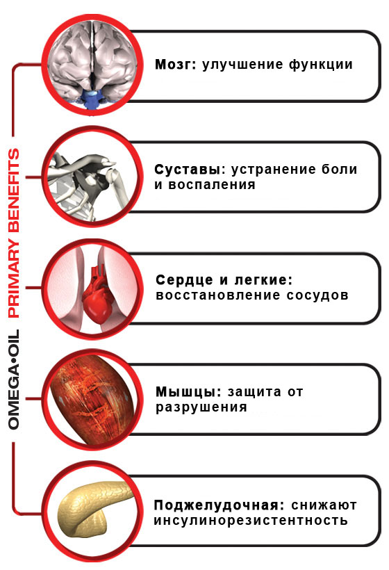 Файл:Omegaoil-benefits.jpg
