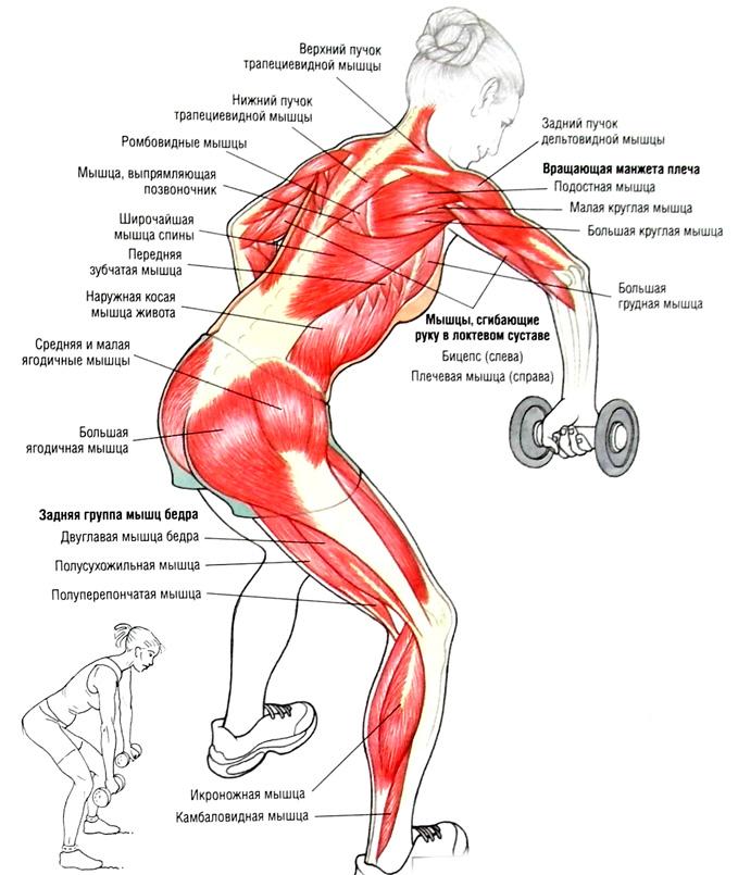 Подтянуть все мышцы в домашних условиях