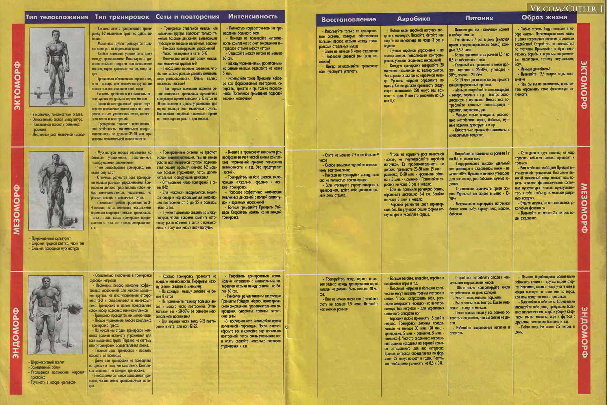 Схема тренировок для эндоморф 152