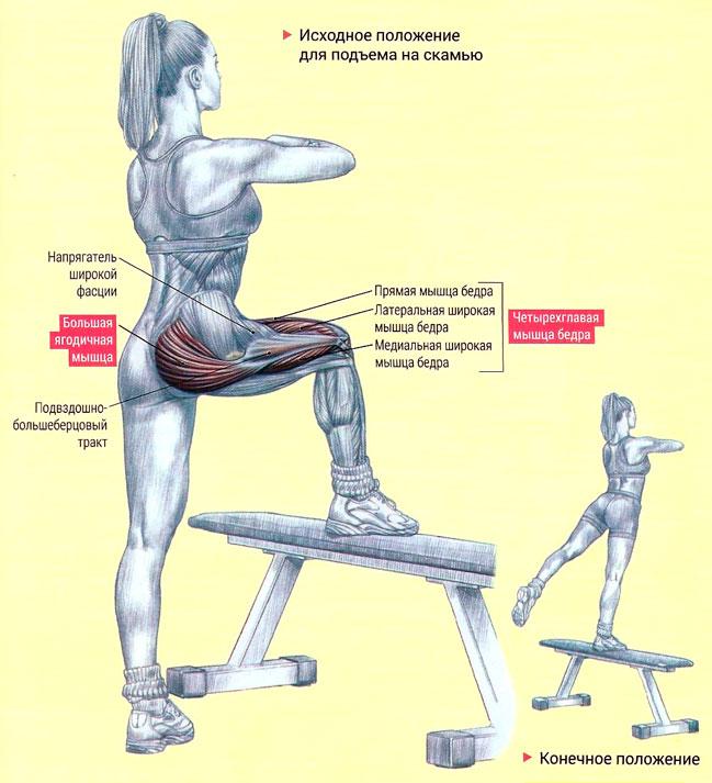Упражнения в домашних условиях на мышцы ягодиц 303