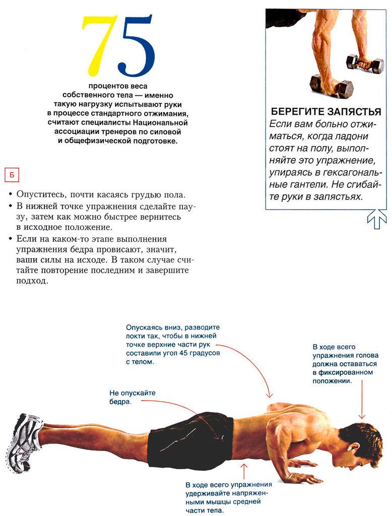 Схема тренировок в отжимания от пола