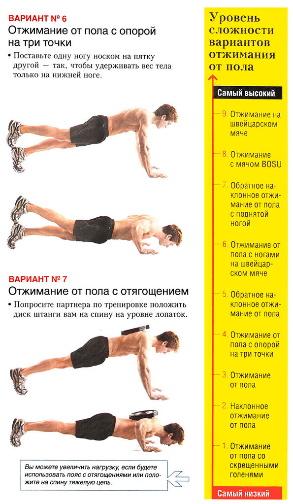 программа отжиманий похудения