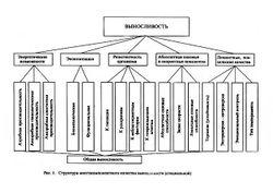Развитие выносливости, советы специалистов