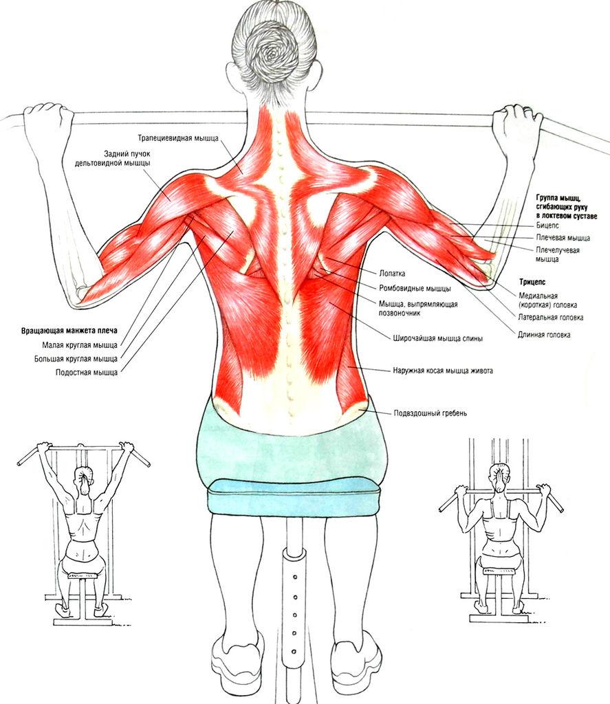 Гимнастика при грудном остеохондрозе по дикулю