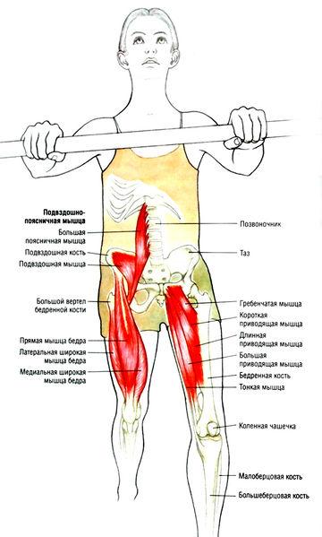 упражнения для всех суставов и мышц лица